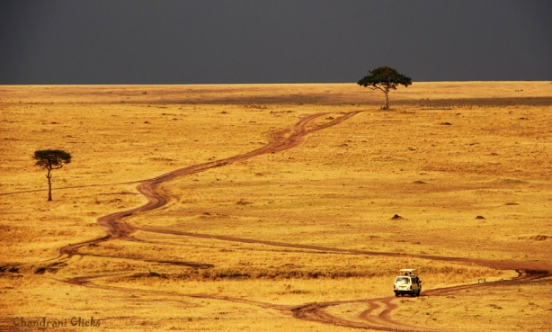 A road less travelled. In Kenya
