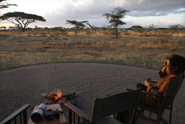 Ndutu Lodge in Tanzania had no fencing